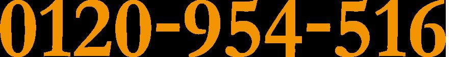 0120954516